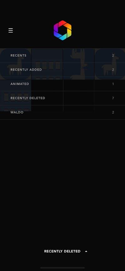 Action Options screenshot